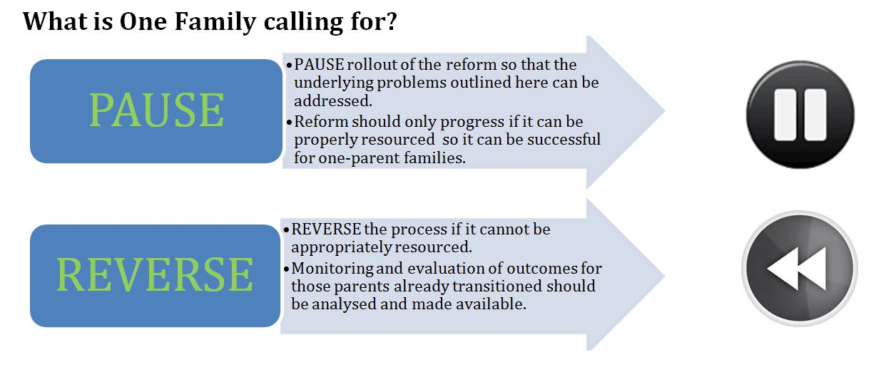 Reform Doc Graphic_What is One Family calling for